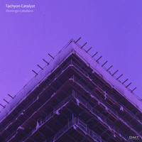 Domingo Caballero - Tachyon Catalyst