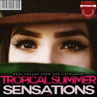 Various Artists - Tropical Summer Sensations, Vol. 2