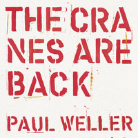 Paul Weller - The Cranes are Back (Edit)