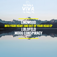 Lindwood - Into Your Heart and Out of Your Head