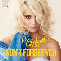 Pixie Lott - Won't Forget You