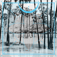 Four Tet - Jupiters / Lion (Remix)