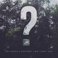 RoyGreen & Protone - Why Don't You - EP