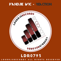 Vandjie Wic - Reaction