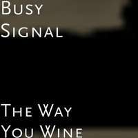 Busy Signal - The Way You Wine