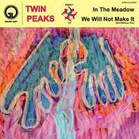 Twin Peaks - In the Meadow / We Will Not Make It (Not Without You)