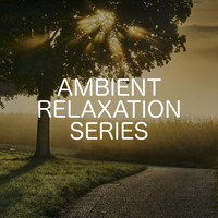 Relaxing Chill Out Music - Ambient Relaxation Series