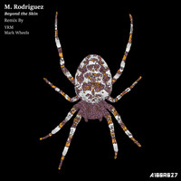 M. Rodriguez - Beyond the Skin