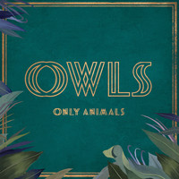 Owls - Only Animals (feat. Allyson Ezell)
