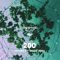 various artisits - 200 (Compiled and Mixed By Enzo Leep)