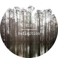 Pin - Reflection