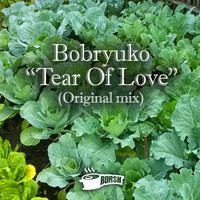 Bobryuko - Tear Of Love
