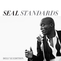 Seal - Anyone Who Knows What Love Is