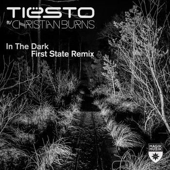Tiësto featuring Christian Burns - In the Dark