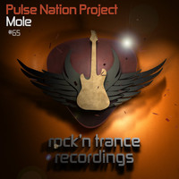 Pulse Nation Project - Mole