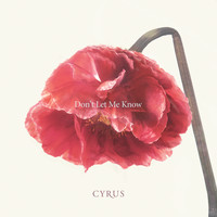 Cyrus - Don't Let Me Know