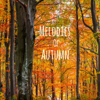 Meditation Music Zone - Melodies of Autumn