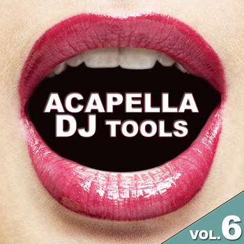 Various Artists - Acapella DJ Tools Vol. 6
