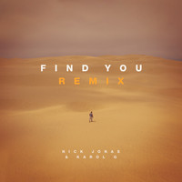 Nick Jonas / Karol G - Find You (Remix)