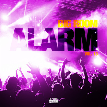 Various Artists - Big Room Alarm, Vol. 13