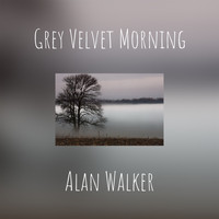 Alan Walker - Grey Velvet Morning