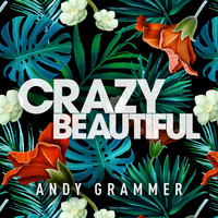 Andy Grammer - Crazy Beautiful EP