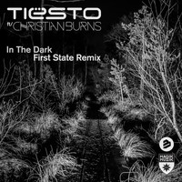 Tiësto featuring Christian Burns - In the Dark First State Remix