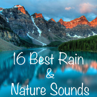 Rain Sounds, Meditation Music Zone, Nature Sounds Nature Music - 16 Best Rain And Nature Sounds with no Fades