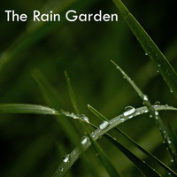 Zen Music Garden, White Noise Research, Nature Sounds - 15 Rain Garden White Noise Rain Showers