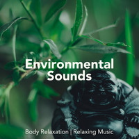 Om - Tibetan Relaxation & Piano Music Songs - Environmental Sounds for Body Relaxation, Relaxing Music, Asian Instrumental Songs