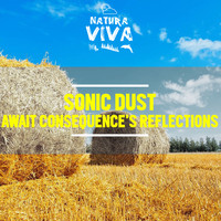 Sonic Dust - Await Consequence's Reflections