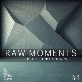 Various Artists - Raw Moments, Vol. 4 - Rough Techno Sounds