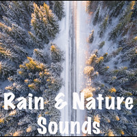 Rain for Deep Sleep, Yoga, The Rain Library - 15 Sleep Sounds - Rain and Nature, Waves and Birds