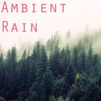 Rain Sounds, Meditation Music Zone, Nature Sounds Nature Music - 2017 Ambient Rain Collection
