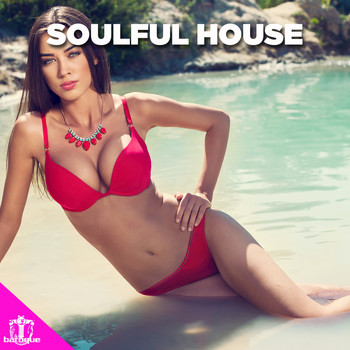 Various Artists - Soulful House