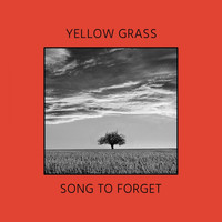 Yellow Grass - Song To Forget