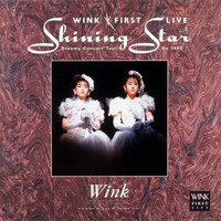 Wink - Wink First Live Shining Star - Dreamy Concert Tour on 1990 -