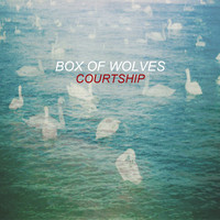 Box Of Wolves - Courtship