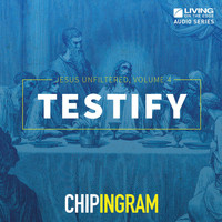 Chip Ingram - Testify: Jesus Unfiltered, Vol. 4