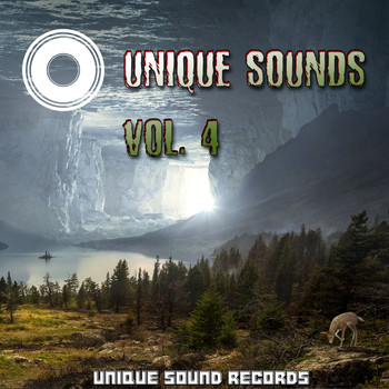 Various Artists - Unique Sounds, Vol. 4