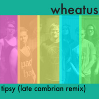 Wheatus - Tipsy (Late Cambrian Remix)