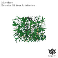 Moonface - Enemies Of Your Satisfaction