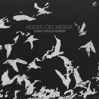 Hidden Orchestra - Dawn Chorus (Remixes)