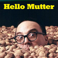 Allan Sherman - Hello Mutter