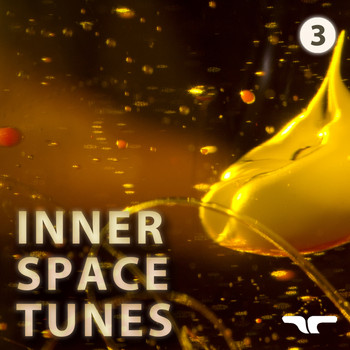 Various Artists - Inner Space Tunes 3