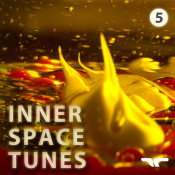 Various Artists - Inner Space Tunes 5