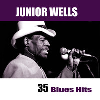 Junior Wells - 35 Blues Hits