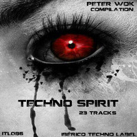 Peter Wok - Techno Spirit