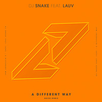 DJ Snake - A Different Way (Noizu Remix)
