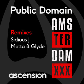 Public Domain - Amsterdam (The Remixes)